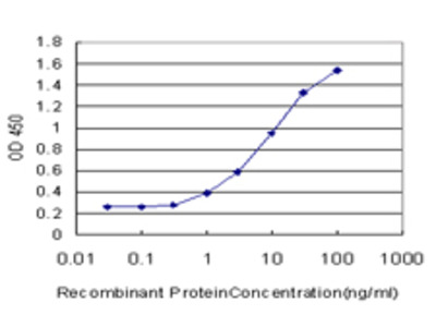 CYP1B1 Monoclonal Antibody