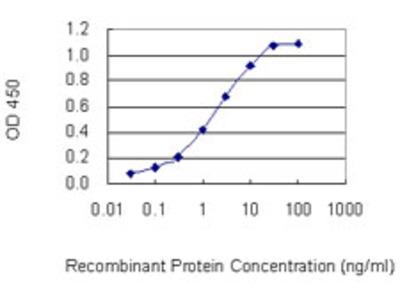 Neurotrypsin Monoclonal Antibody