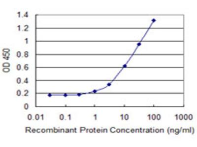ZNF165 Monoclonal Antibody