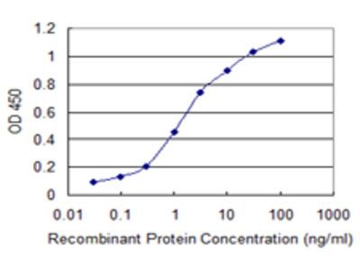 PXDN / MG50 Monoclonal Antibody