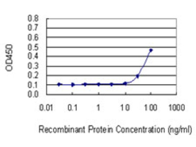 PNP / Nucleoside Phosphorylase Monoclonal Antibody