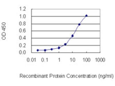 TRPC1 Monoclonal Antibody