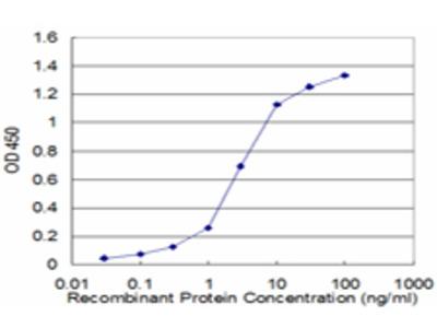 PPP2R2C Monoclonal Antibody