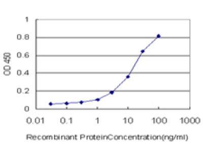 GRID2 Monoclonal Antibody