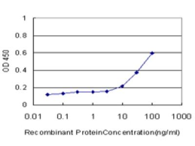 RLN1 / Relaxin Monoclonal Antibody