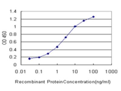 ATRX Monoclonal Antibody