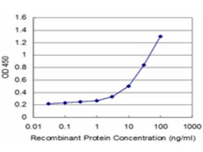 IL12RB2 Monoclonal Antibody