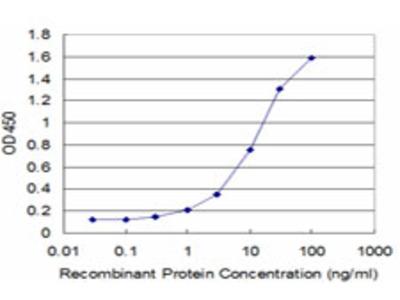SS18 Monoclonal Antibody