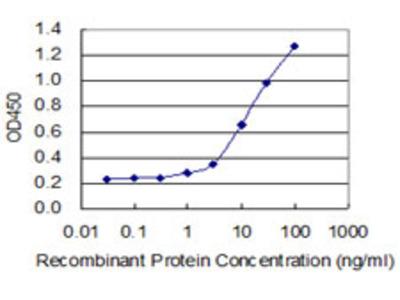 CRH / CRF Monoclonal Antibody