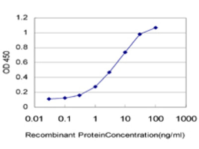 TTR / Transthyretin Monoclonal Antibody