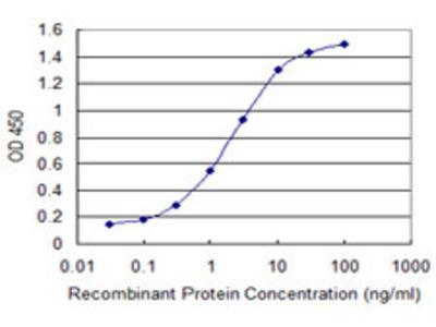 LALBA / Alpha Lactalbumin Monoclonal Antibody