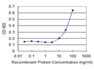 CPA3 Monoclonal Antibody