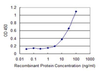 SGCA / DAG2 Monoclonal Antibody