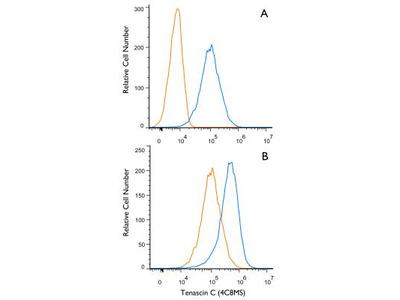 Mouse Monoclonal Tenascin C Antibody