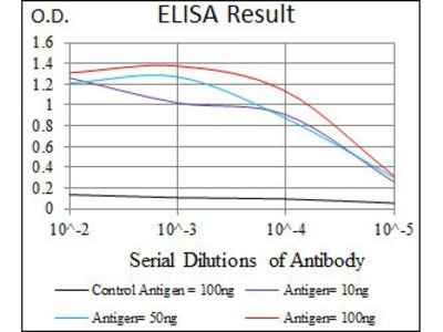 CD5 antibody