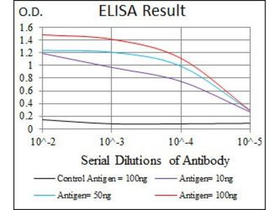 LMO2 antibody
