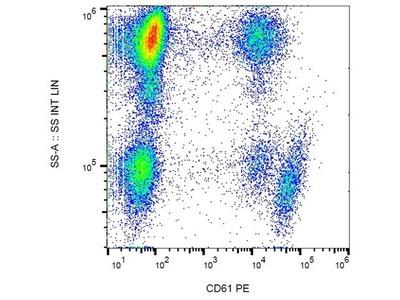 CD61 antibody (PE )
