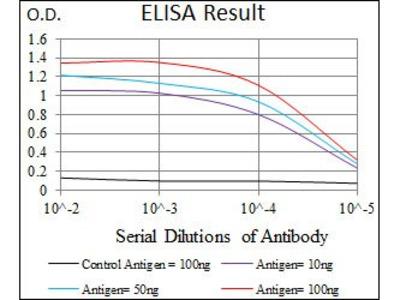 SCGB1A1 antibody