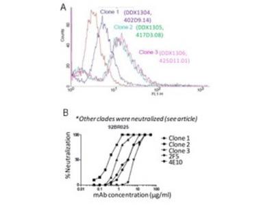 HIV-1 gp41 Antibody (402D9.14 / clone 1)