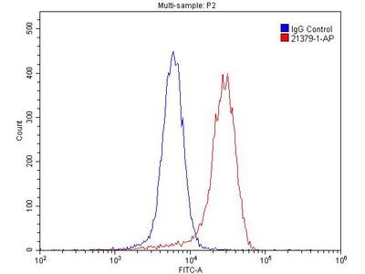 CHRNA7 Polyclonal Antibody