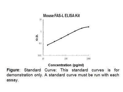 FasL (mouse) ELISA Kit