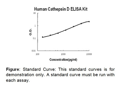 Cathepsin D (human) ELISA Kit