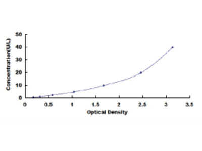 ELISA Kit for Membrane Protein, Palmitoylated 2 (MPP2)