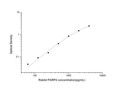 Rabbit PARP4 (Poly ADP Ribose Polymerase 4) ELISA Kit