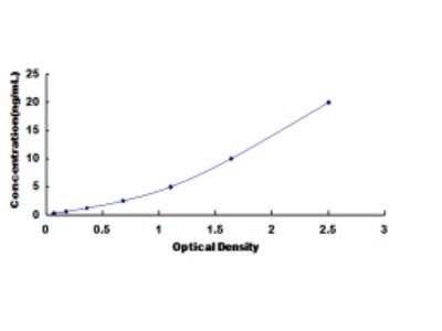 ELISA Kit for Calcium/Calmodulin Dependent Protein Kinase II Beta (CAMK2b)