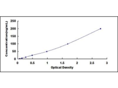 ELISA Kit for 2',5'-Oligoadenylate Synthetase 2 (OAS2)
