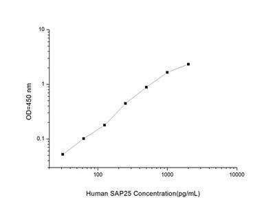 Human SAP25 (Synaptosome Associated Protein 25) ELISA Kit