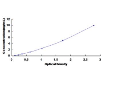 ELISA Kit for Succinate Dehydrogenase Complex Subunit C (SDHC)