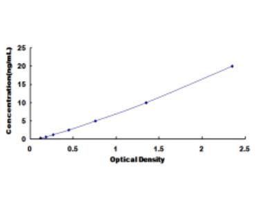 ELISA Kit for Glutamate Receptor, Ionotropic, N-Methyl-D-Aspartate 2D (GRIN2D)