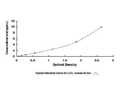 ELISA Kit for Lysyl Oxidase (LOX)