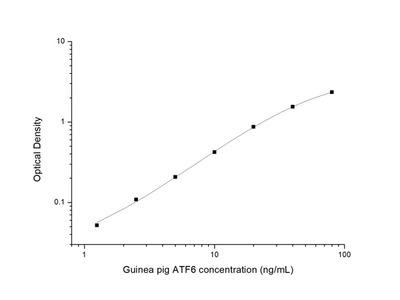 Guinea pig ATF6 (Activating Transcription Factor 6) ELISA Kit