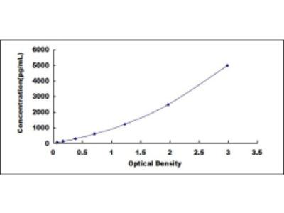ELISA Kit for Complement Component 1, Q Receptor (C1qR1)