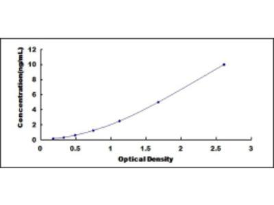 ELISA Kit for Protoporphyrinogen Oxidase (PPOX)