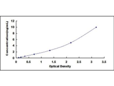 ELISA Kit for Doublecortin Like Kinase 1 (DCLK1)