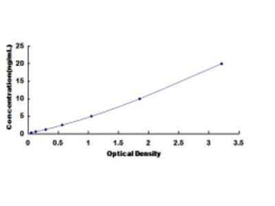 ELISA Kit for Synapsin I (SYN1)