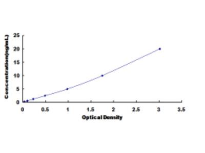 ELISA Kit for Glycogen Phosphorylase, Muscle (PYGM)