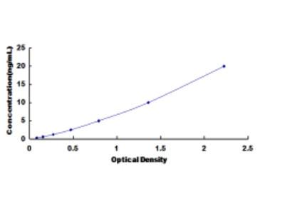 ELISA Kit for Proprotein Convertase Subtilisin/Kexin Type 2 (PCSK2)