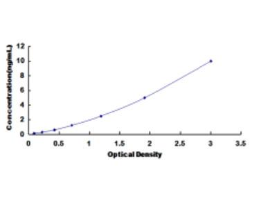 ELISA Kit for Dedicator Of Cytokinesis 4 (DOCK4)