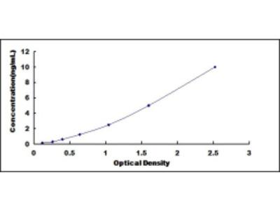 ELISA Kit for Prolyl-4-Hydroxylase Alpha Polypeptide II (P4Ha2)