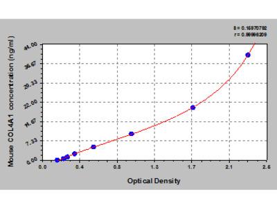 Mouse Collagen alpha-1 (IV) chain, COL4A1 ELISA Kit