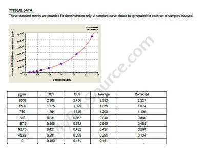 Human Neurabin-2, PPP1R9B ELISA Kit