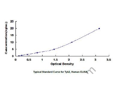 ELISA Kit for Tyrosine Kinase 2 (Tyk2)