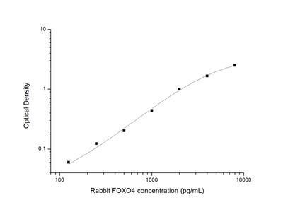 Rabbit FOXO4 (Forkhead Box Protein O4) ELISA Kit