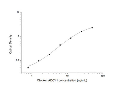Chicken ADCY1 (Adenylate Cyclase 1, Brain) ELISA Kit