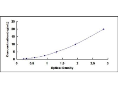ELISA Kit for Platelet Derived Growth Factor C (PDGFC)