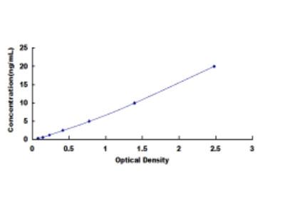 ELISA Kit for Adenylate Cyclase 5 (ADCY5)